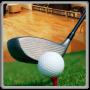 icon Golf Tournament 3D