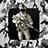 icon Military Photo Montage 1.9