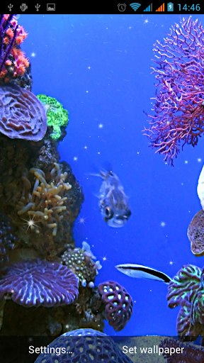 Aquarium Live Wallpaper For Samsung Galaxy J1 Ace Free Download Apk File For Galaxy J1 Ace