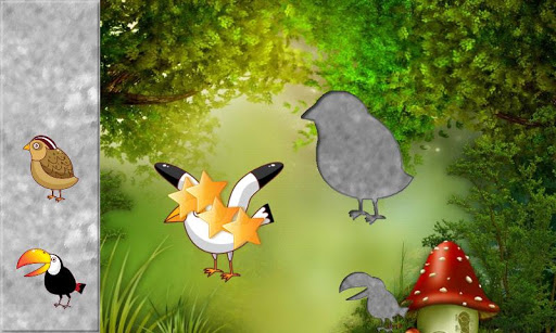 Birds Puzzles for Toddlers !