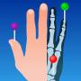 icon e-Anatomy