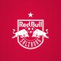 icon FC RBS
