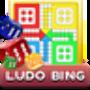 icon Ludo Bing