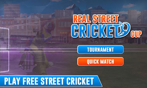 Real Street Cricket Cup 2017