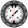 icon Compass PRO for elephone U