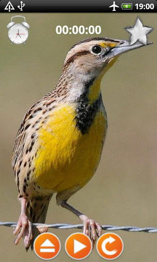 Birds Calls Sounds for ZTE Blade V7 - free download APK file for