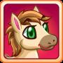 icon Pony Land