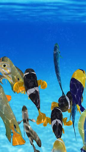 Happy Fish 3D