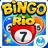 icon Bingo 1.5.1.2g