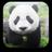 icon Panda Video Wallpaper 1.4