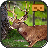 icon Jungle Animal Hunter VR 1.0