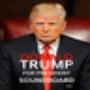 icon Donald Trump SB