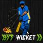 icon Hit Wicket India 2017 #VIVOIPL
