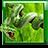 icon Snake Live Wallpaper 1.8