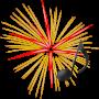 icon Firework & Firecracker Sounds