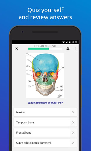 Free download Memorang: Flashcards & Quizzes APK for Android