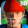 icon Cricket Simulator 3D