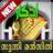 icon Sunni Manzil 8