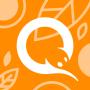 icon QIWI