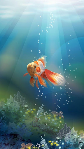 Goldfish Live Wallpaper for Oppo A37 - free download APK