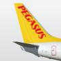 icon Pegasus