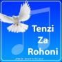 icon tenzizarohoni
