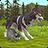 icon WildCraft 20_powervr