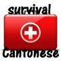 icon Cantonese Survival Kit