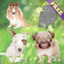icon Puppy Puzzles for Toddlers