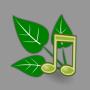icon Nature Sound