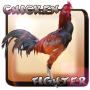 icon com.pooandplay.chickenfighterindonesia