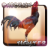 icon com.pooandplay.chickenfighterindonesia 3.0